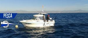 slider pesca alicante